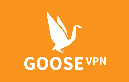 1 Month VPN Plan Subscription at €12.99 per month only