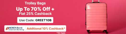 paytm mall trolley bags promo code