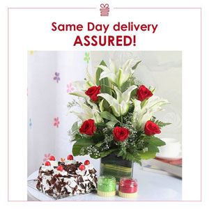 same day delivery assured